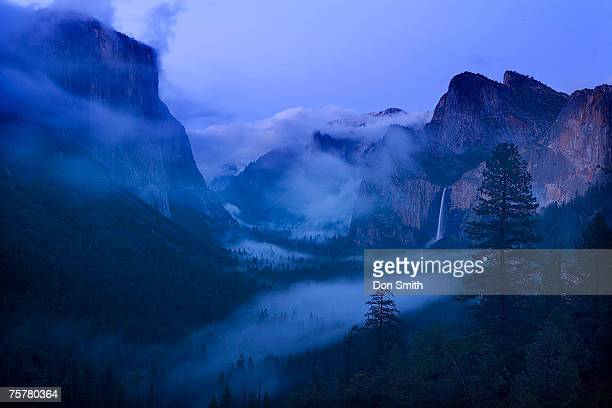 usa, california, yosemite national park, fog at dusk - don smith stock pictures, royalty-free photos & images