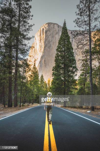 usa, california, yosemite national park, man walking on road with el capitan in background - el capitan yosemite national park stock pictures, royalty-free photos & images
