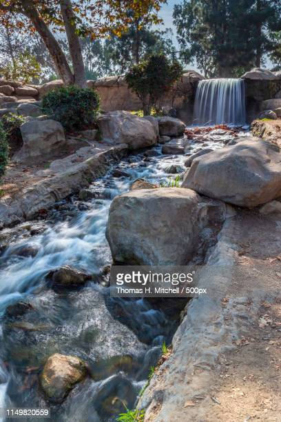 california-inglewood-kenneth hahn sate recreation area - brook mitchell stock pictures, royalty-free photos & images