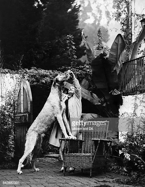 Californian estate owner with her Irish Wolfhound date unknown probably 1930 published in Berliner Illustrirte Zeitung BIZ 35/1930