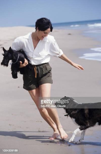 Californie EtatsUnis 13 avril 1992 L'actrice Ali MAC GRAW chez elle à Malibu avec son chien Amtrak Ici marchant en short sur la plage et faisant un...