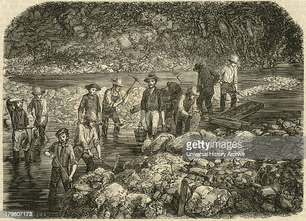 Washing for gold in the Bedwell River in the Californian gold fields Engraving 1853