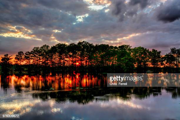 calion lake at sunset, calion, arkansas, usa - arkansas stock pictures, royalty-free photos & images