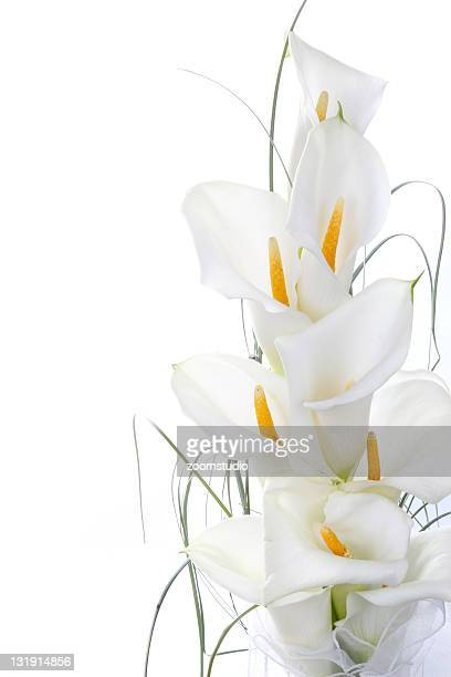 Calla lilies in bouquet