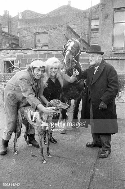 Called 'Steptoe and Son Ride Again' the film released 1973 stars Wildred Brambell as Albert Steptoe Harry H Corbett as his son Harold Steptoe and...