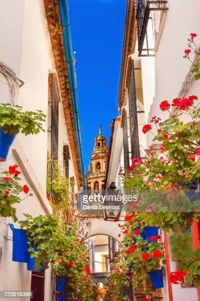 calleja de las flores, old torre del alminar bell tower, mezquita, cordoba, andalusia, spain - スペイン コルドバ市 ストックフォトと画像