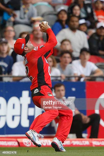 Callum Ferguson of the Melbourne Renegades takes a catch to dismiss Eoin Morgan of the Sydney Thunder during the Big Bash League match between the...