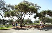 gold coast australia callum hawkins scotland