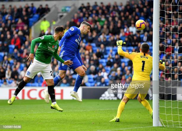 Callum Paterson of Cardiff City scores his team's first goal during the Premier League match between Cardiff City and Brighton Hove Albion at the...