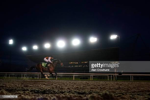 Callum Shepherd riding Omnivega win The 32Red On The App Store Novice Stakes at Kempton Park Racecourse on February 12, 2020 in Sunbury, England.
