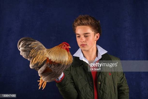 Callum Vivian-Crowder, from Wiltshire, holds his 12 month old Blue Partridge Wyandotte Bantam Cockerel which won a 3rd prize in its breed at the...