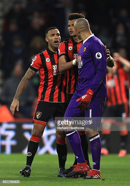 Callum Wilson of AFC Bournemouth and Heurelho Gomes of Watford argue as Tyrone Mings of AFC Bournemouth intervenes during the Premier League match...