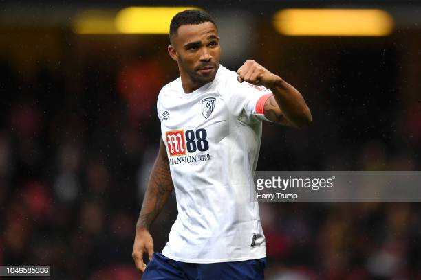 Callum Wilson of AFC Bournemouth celebrates after scoring his team's fourth goal during the Premier League match between Watford FC and AFC...