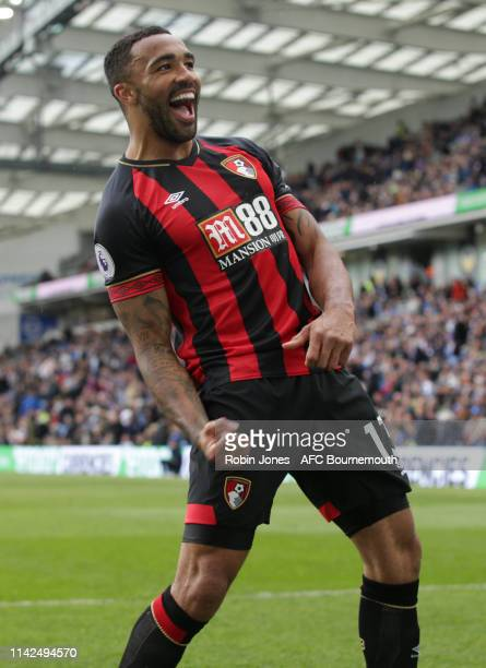 Callum Wilson of Bournemouth celebrates after he scores a goal to make it 3-0 during the Premier League match between Brighton & Hove Albion and AFC...