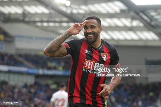 Callum Wilson of Bournemouth celebrates after he scores a goal to make it 30 during the Premier League match between Brighton Hove Albion and AFC...