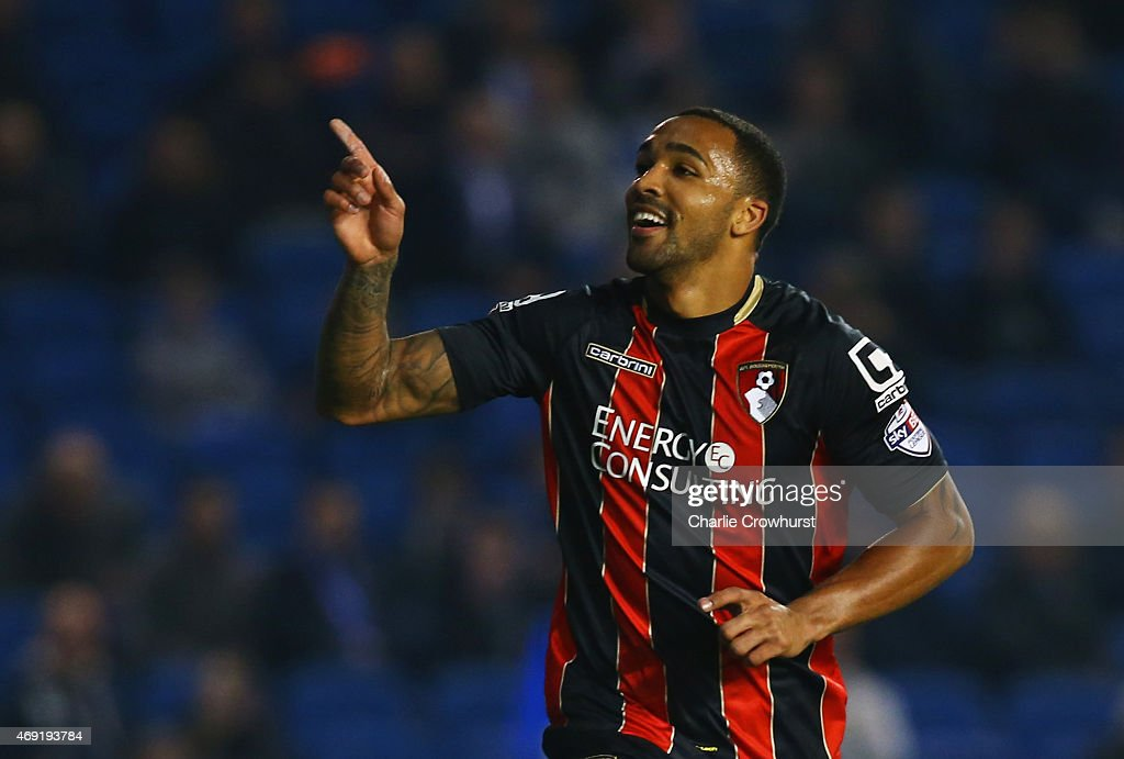 Callum Wilson of Bournemouth celebrates as he scores their second goal during the Sky Bet Championship match between Brighton & Hove Albion and AFC Bournemouth at Amex Stadium on April 10, 2015 in Brighton, England.