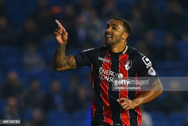 Callum Wilson of Bournemouth celebrates as he scores their second goal during the Sky Bet Championship match between Brighton Hove Albion and AFC...