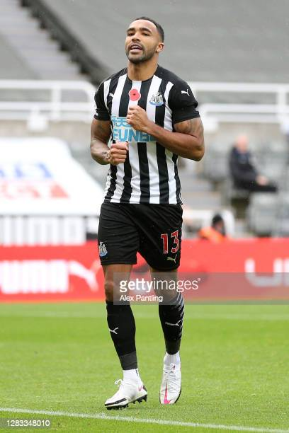 Callum Wilson of Newcastle United celebrates after scoring his sides first goal during the Premier League match between Newcastle United and Everton...