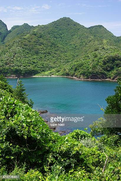 Calm bay surrounded by forested mountains, Japan