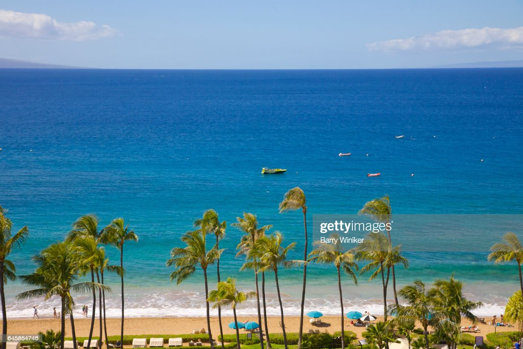 Calm blue Pacific Ocean, boats and palm trees, Maui : Foto de stock