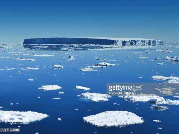 calm blue sea with icebergs and mirrored sky, southern ocean, antarctica - drift ice stock pictures, royalty-free photos & images