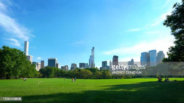 calm in central park. new york - central park fotografías e imágenes de stock