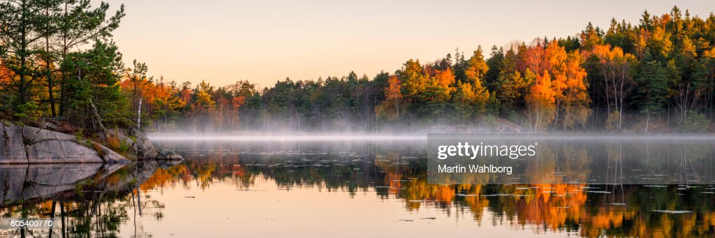 Calm lake in the forest : Stock Photo