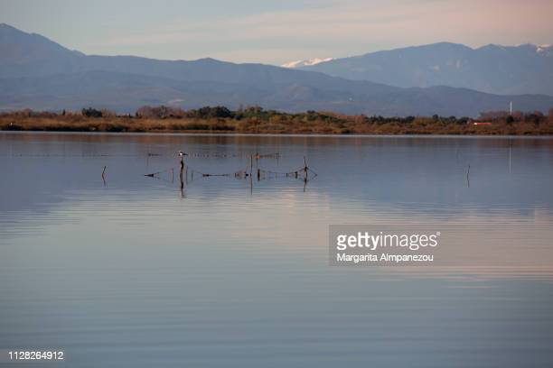 Calm lake with fishing nets and mountains in the distance