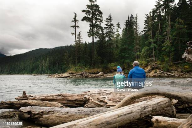 calm moment of man and child sitting on logs near a lake - wide shot stock pictures, royalty-free photos & images