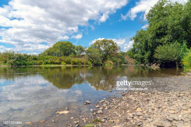 calm river in the forest - george wood stock pictures, royalty-free photos & images