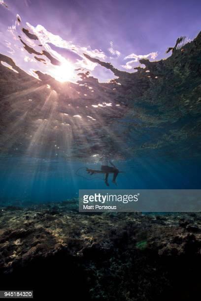 calmness before the wave - submarino debaixo d'água - fotografias e filmes do acervo