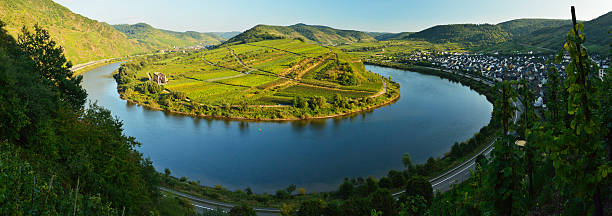 Calmont Vineyards, Bremm Village And Moselle River Wall Art