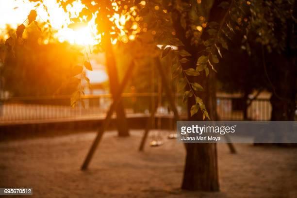 calor y verano - agosto foto e immagini stock
