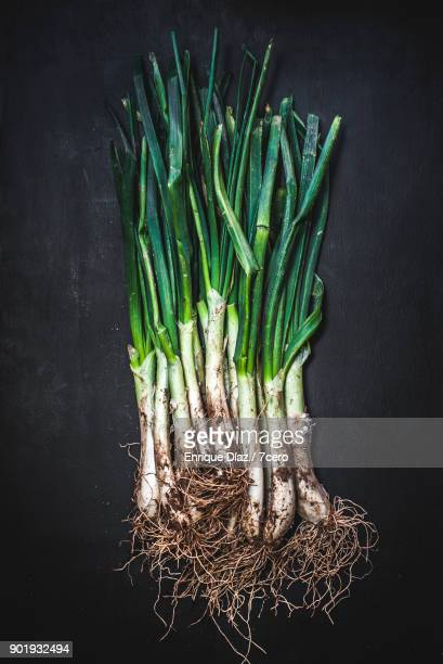 Calçots from the earth