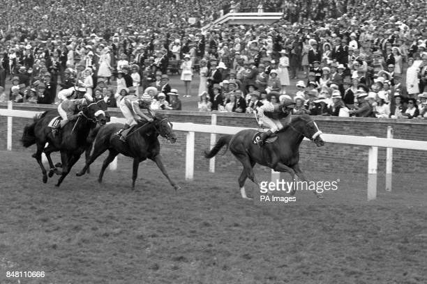 Calpurnius with George Duffield up winning the Royal Hunt Cup from Brabant Lester Piggott up and Deadly Nightshade with Ron Hutchinson up