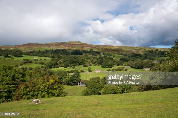 Calver Hill near Reeth in Swaledale, Yorkshire Dales, England