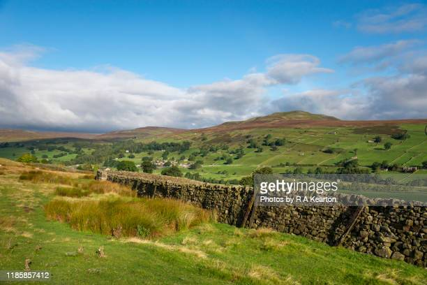 calver hill, reeth, swaledale, north yorkshire, england - north yorkshire stock pictures, royalty-free photos & images