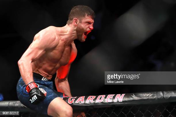 Calvin Kattar celebrates his win by TKO against Shane Burgos in their Featherweight fight during UFC 220 at TD Garden on January 20 2018 in Boston...