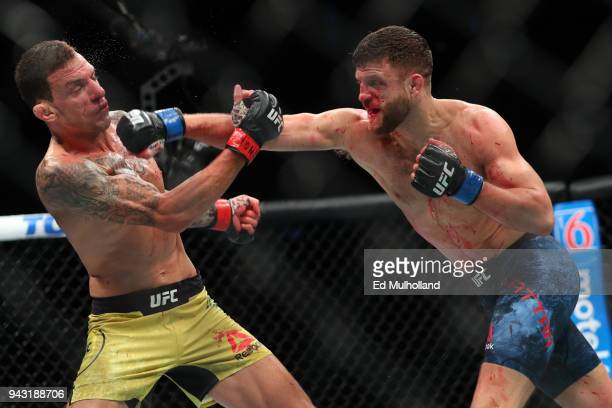 Calvin Kattar lands a right hand to the head of Renato Moicano during their featherweight bout at UFC 223 at Barclays Center on April 7 2018 in New...