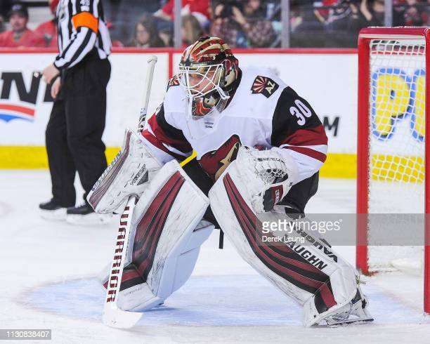 Calvin Pickard of the Arizona Coyotes in action against the Calgary Flames during an NHL game at Scotiabank Saddledome on February 18 2019 in Calgary...
