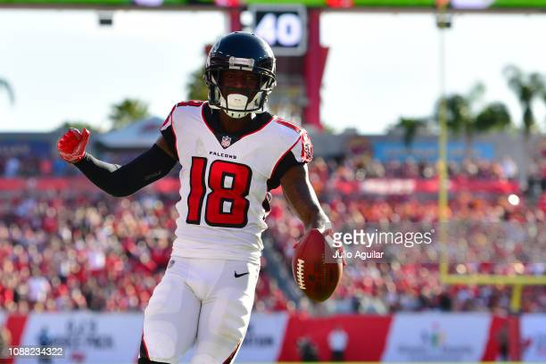Calvin Ridley of the Atlanta Falcons catches a 7yard touchdown pass from Matt Ryan during the fourth quarter against the Tampa Bay Buccaneers at...