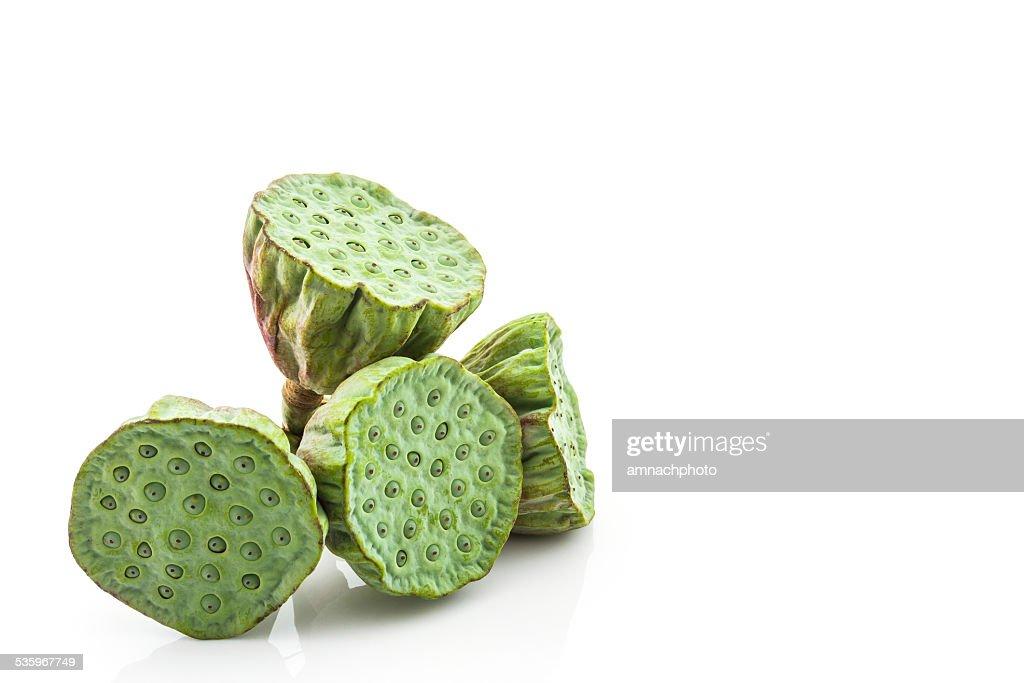 Calyx, Lotus seeds green. : Stock Photo