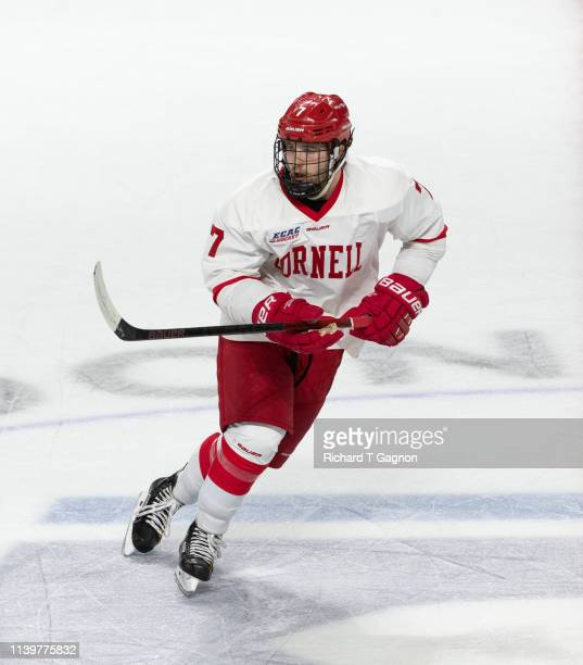 Cam Donaldson of the Cornell Big Red skates during a game against the Providence College Friars during the NCAA Division I Men's Ice Hockey East...