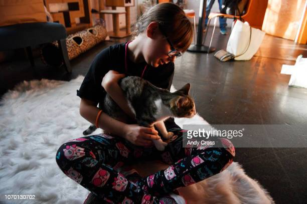 Cam Jones holds cat up for adoption inside the Cat Cafe at the 1st annual Snowcats Cat Convention at the EXDO Event Center December 08, 2018. Denver...