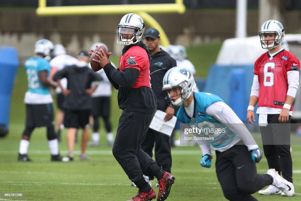 NFL: MAY 29 Panthers OTA : News Photo