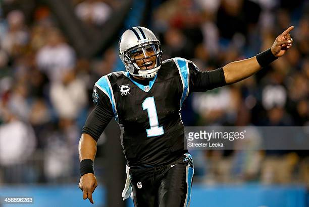 Cam Newton of the Carolina Panthers celebrates after a play during their game against the New York Jets at Bank of America Stadium on December 15...