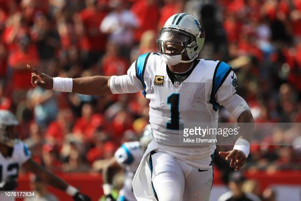 Cam Newton of the Carolina Panthers celebrates after a touchdown during the first quarter against the Tampa Bay Buccaneers at Raymond James Stadium...