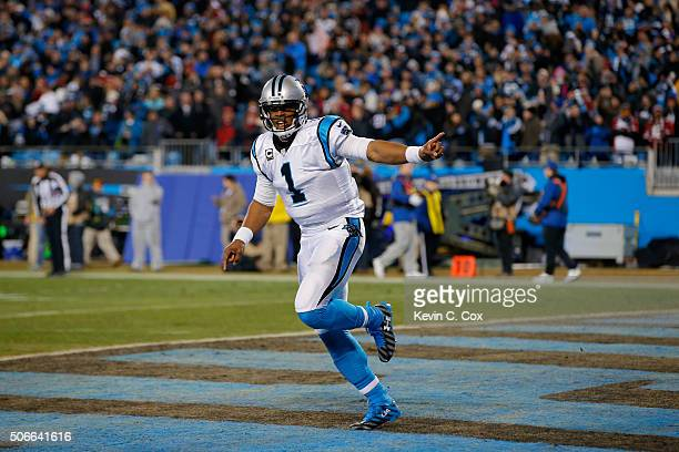 Cam Newton of the Carolina Panthers celebrates after Corey Brown scored an 86 yard touchdown in the first quarter against the Arizona Cardinals...