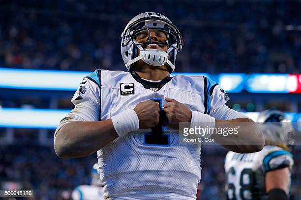 Cam Newton of the Carolina Panthers celebrates after scoring a touchdown in the third quarter against the Arizona Cardinals during the NFC...