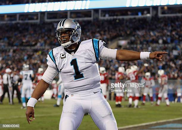 Cam Newton of the Carolina Panthers celebrates after Ted Ginn Jr #19 scores a touchdown in the first quarter against the Arizona Cardinals during the...